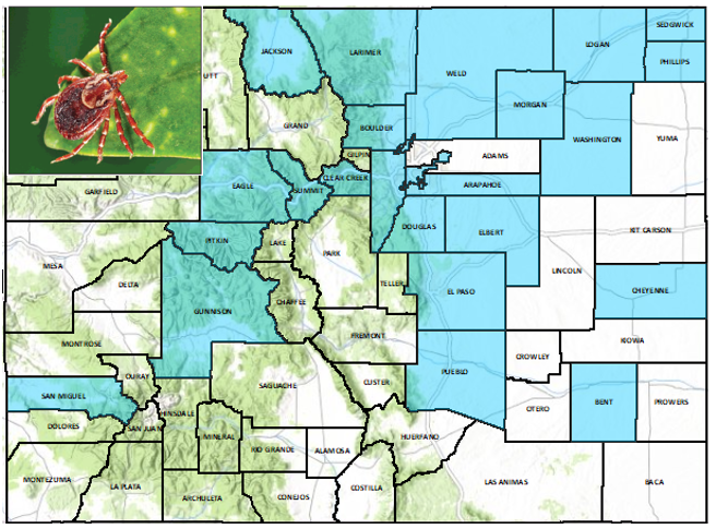 American Dog Tick distribution map-Colorado