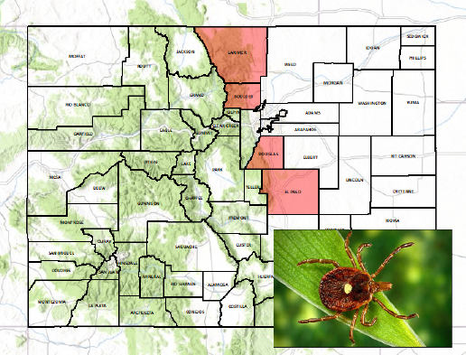 Lone Star Tick Distribution Map in Colorado