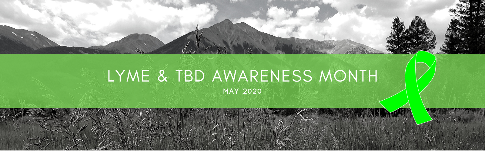 May Lyme & TBD Awareness Month